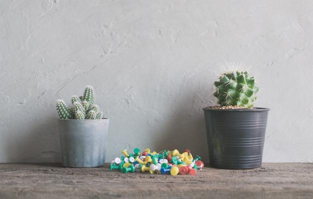 Fiore di cactus con perni su interni in legno mensole da parete e da fare per fare la lista di sfondo. Foto Premium
