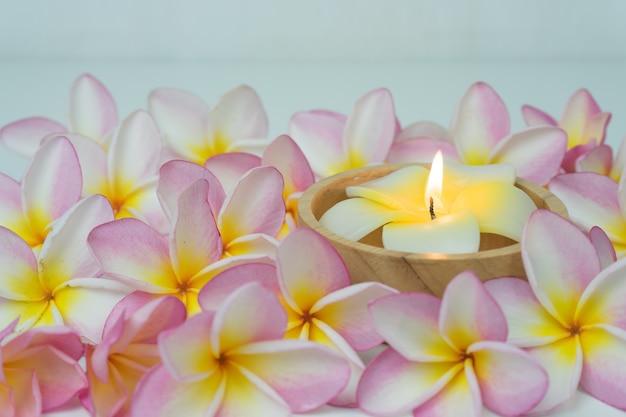 Fiore e candela di plumeria su fondo Foto Premium