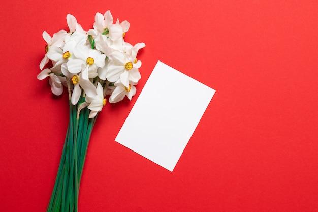 Fiori bianchi del narciso o del narciso su rosso Foto Premium