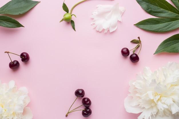 Fiori bianchi di peonia e bacche di ciliegia sulla superficie di rosa pastello Foto Premium