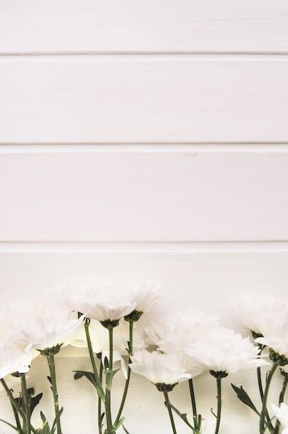 Fiori Di Fronte A Uno Sfondo Bianco Di Legno Verticale Scaricare