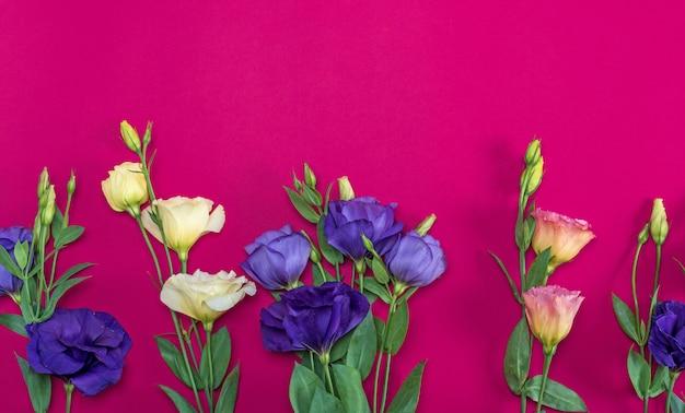Fiori freschi di fioritura eustoma lisianthus Foto Premium
