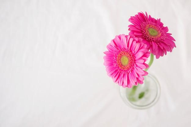 Fiori Giallo Verdognoli A Grappolo.Fiori Rosa Con Steli Verdi In Vaso Foto Gratis