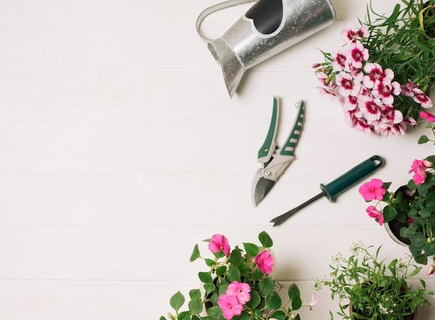 Fiori rosa con strumenti da giardinaggio Foto Gratuite