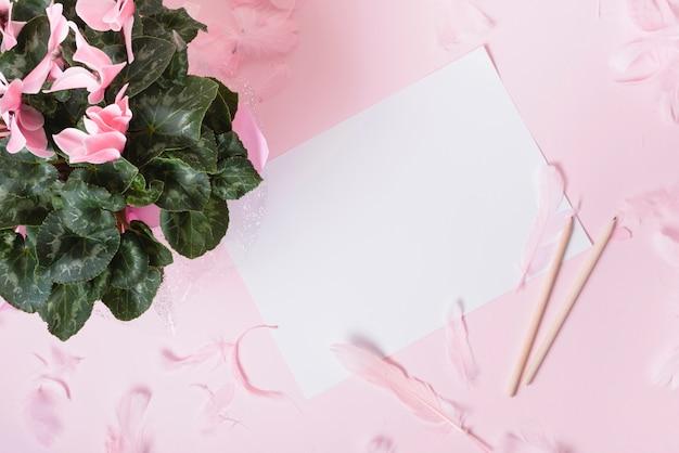 Fiorisca il mazzo con i petali e le piume su libro bianco contro fondo colorato Foto Gratuite