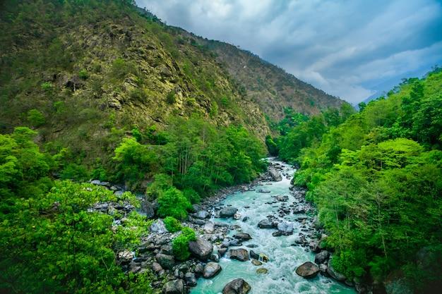 Fiume da trekking sempreverde Foto Premium