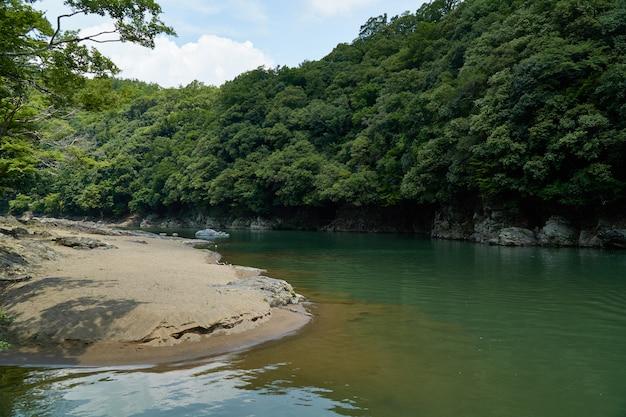 Fiume e riva di katsura con la foresta Foto Premium