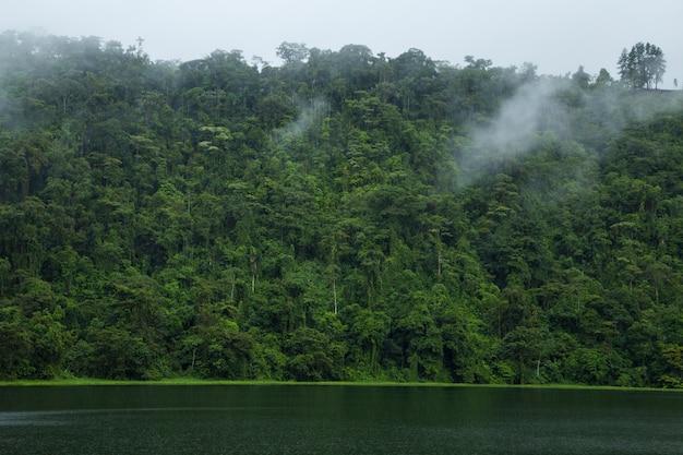 Fiume idilliaco vicino alla foresta pluviale costaricana Foto Gratuite