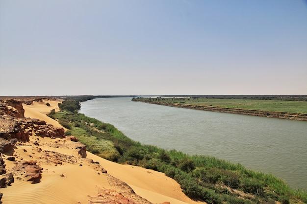 Fiume nilo nel deserto del sahara Foto Premium