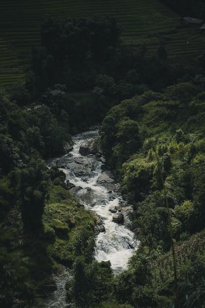 Fiume tra la collina di montagna a sa pa vietnam Foto Premium