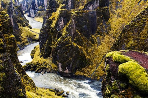 Flusso selvaggio Foto Gratuite