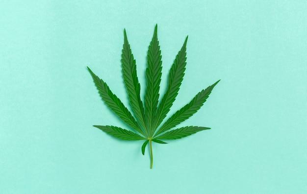 Foglia di cannabis Foto Premium