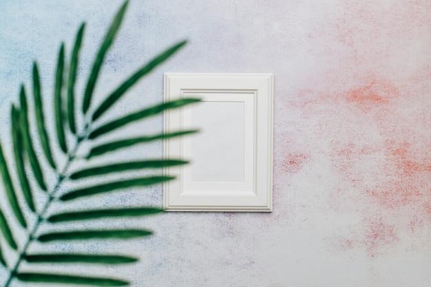 Foglia di palma e cornice bianca con spazio per il testo. Foto Gratuite