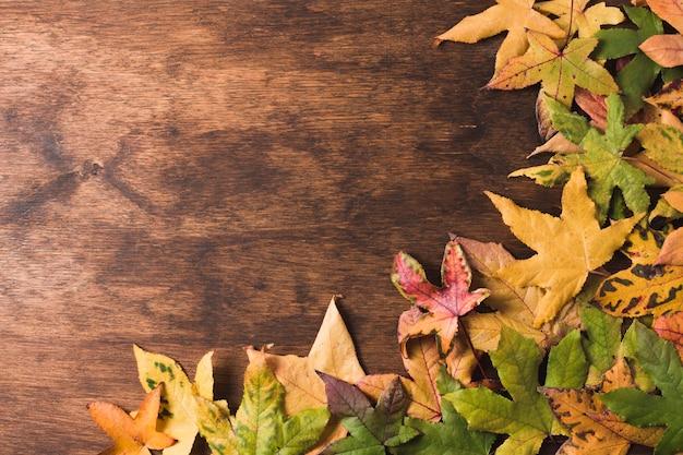 Foglie di autunno piatto lo spazio della copia Foto Gratuite