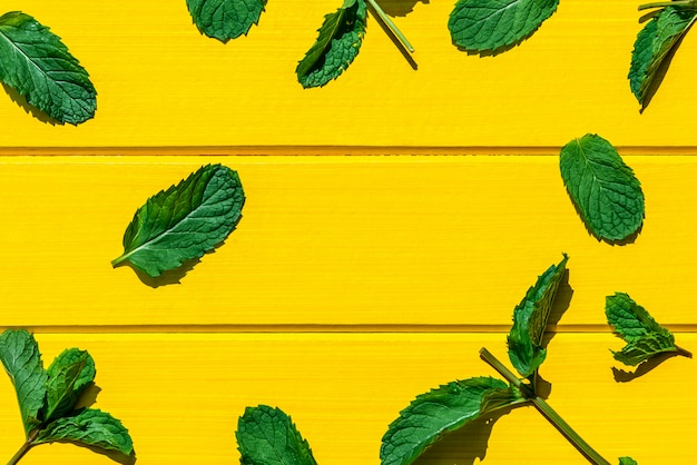 Foglie di menta fresca isolate sulla vista gialla e superiore. Foto Premium