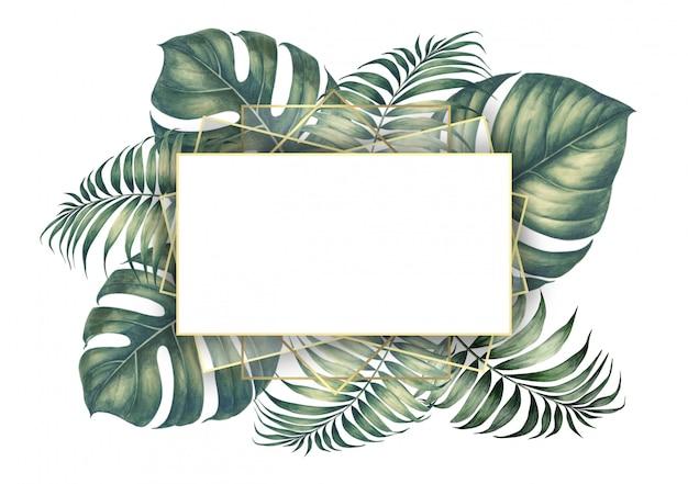 Foglie di palma tropicale. Foto Premium