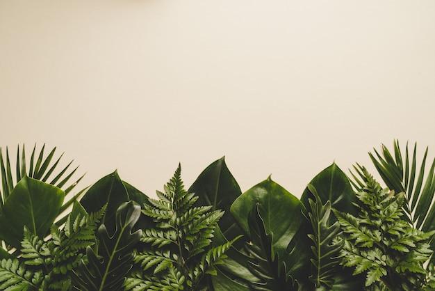 Foglie di palma tropicali con spazio di copia Foto Premium