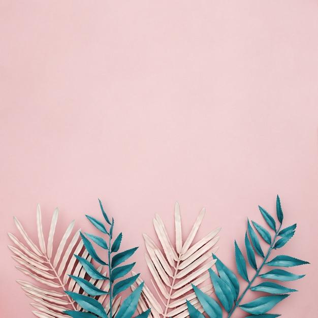 Foglie rosa e blu su sfondo rosa con copyspace dal lato superiore Foto Gratuite