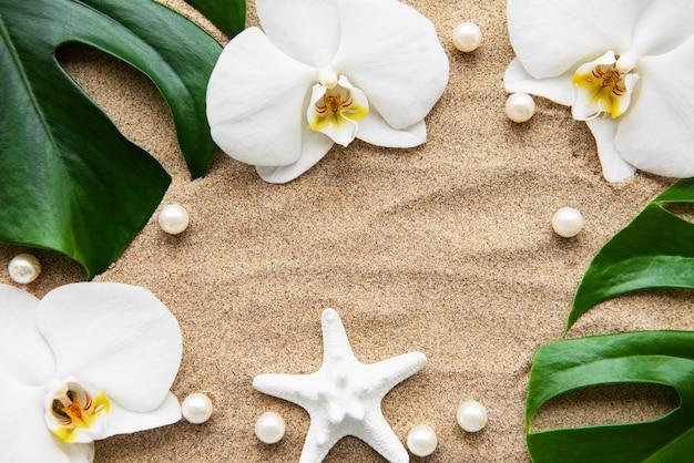 Foglie tropicali monstera e fiori di orchidea Foto Premium