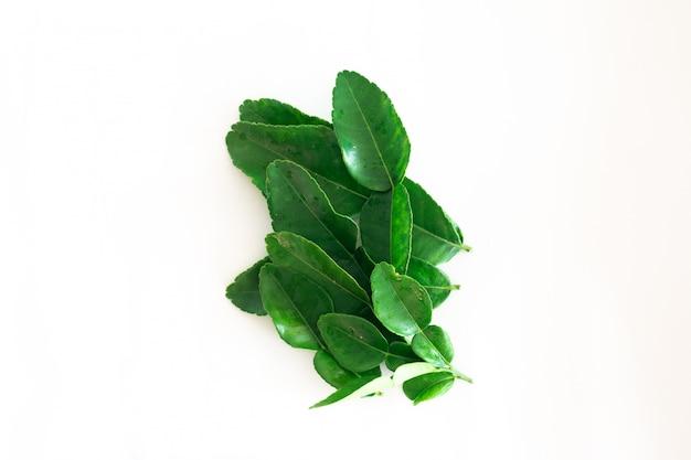 Foglie verdi fresche della calce del kaffir isolate su bianco Foto Premium