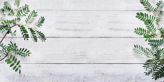 Foglie verdi su legno bianco vintage Foto Premium