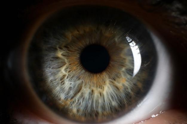 Fondo umano del primo piano del supermacro dell'occhio verde Foto Premium