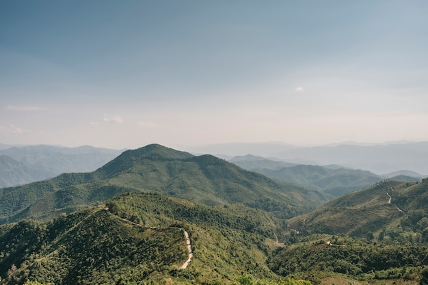 Foresta di montagna e cielo blu Foto Gratuite