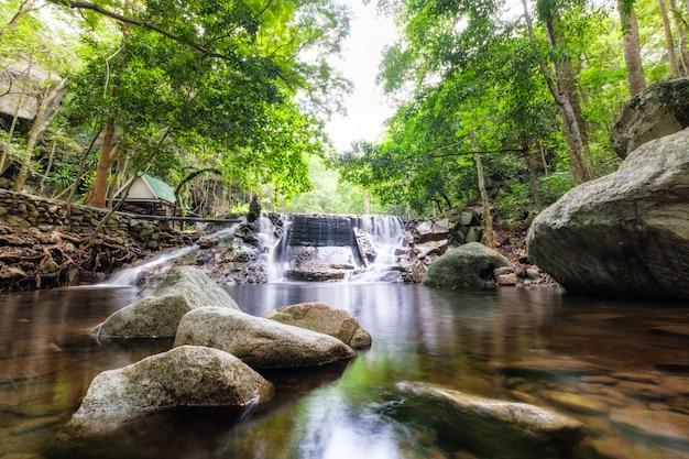 Foresta pluviale tropicale cascata huai yang nel parco nazionale Foto Premium