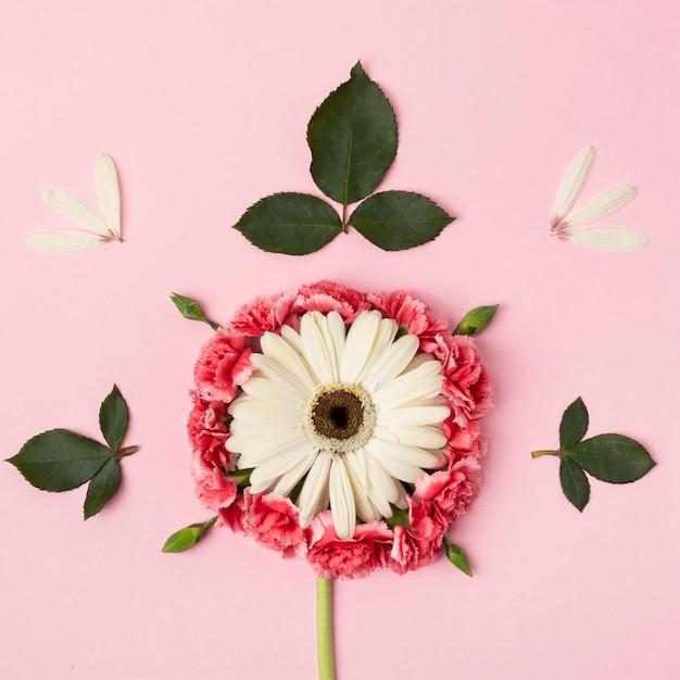 Forma astratta fatta dal primo piano variopinto dei fiori Foto Gratuite