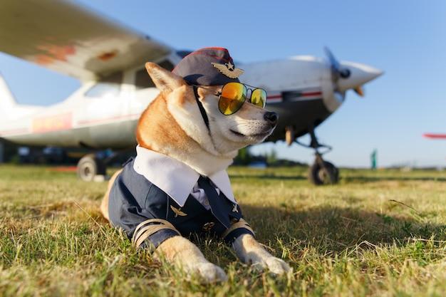 Foto divertente del cane di shiba inu in un vestito pilota all'aeroporto Foto Premium