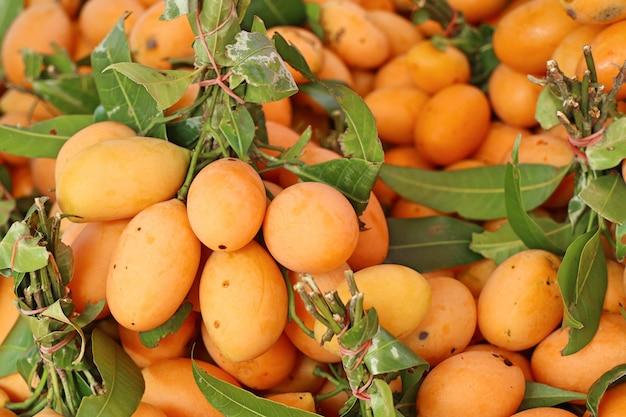 Frutta tailandese di plango o prugna mariana Foto Premium