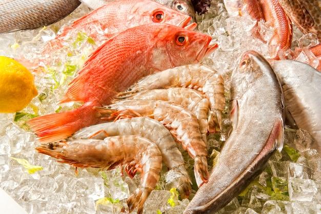 Frutti di mare su ghiaccio al mercato ittico. Foto Premium