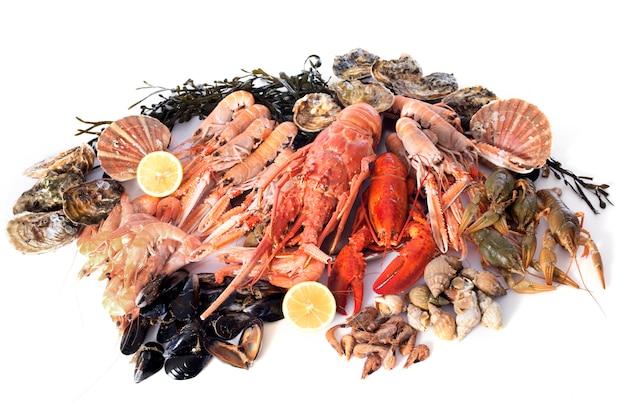 Frutti di mare Foto Premium