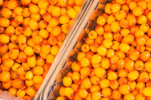 Full frame di frutti di olivello spinoso in cassa Foto Gratuite