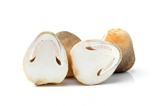 Funghi di paglia di riso freschi, la volvacea di volvariel su spazio bianco Foto Premium