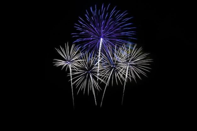Fuochi d'artificio colorati sopra il cielo scuro Foto Premium