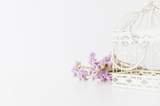 Gabbia bianca e fiori Foto Gratuite
