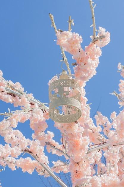 Gabbia per uccelli decorativa bianca che appende sul ramo di di melo di fioritura sopra Foto Premium