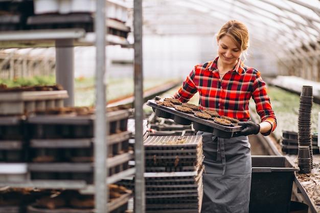 Gardner della donna in una serra Foto Gratuite