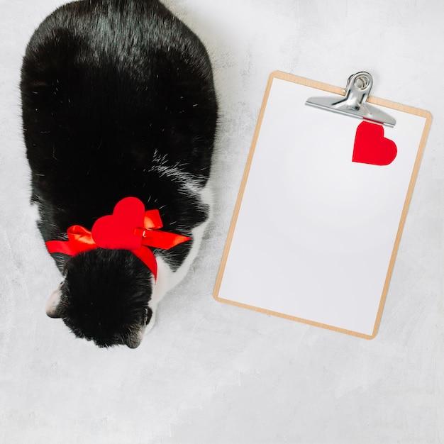 Gatto con il nastro vicino al cuore di appunti e ornamento Foto Gratuite
