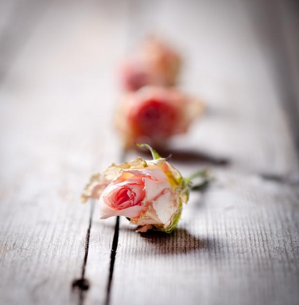 Germogli rosa secchi su un fondo di legno Foto Premium