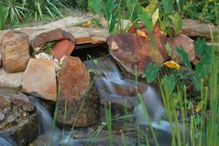 Giardino cascate scaricare foto gratis - Cascate da giardino ...