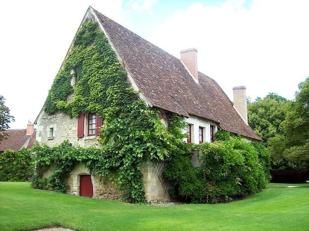 Giardino estivo prato casas primavera fiore foglia for Sito web dove puoi costruire la tua casa
