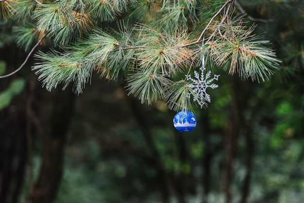 Giocattoli di natale appeso sul ramoscello di conifere nella foresta Foto Gratuite