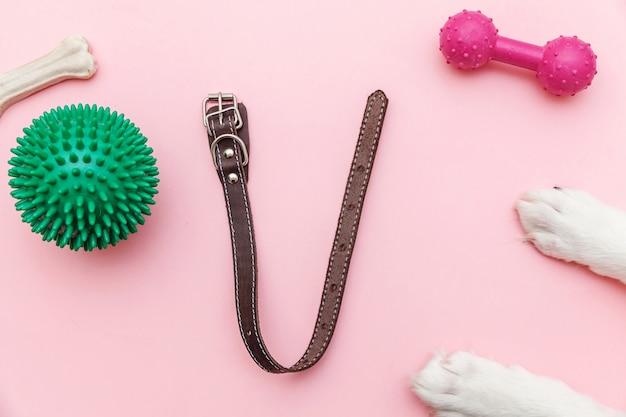 Giocattoli e accessori per zampe di cane per giocare e allenarsi Foto Premium