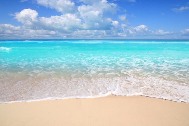 Giorno soleggiato del mare perfetto della spiaggia caraibica del turchese Foto Premium
