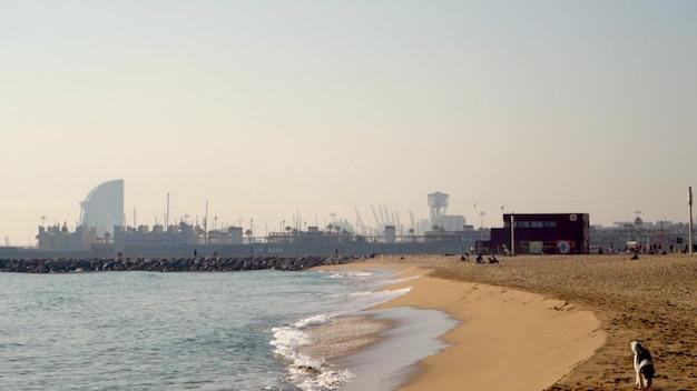 Giorno soleggiato spiaggia della baia della città di barcellona con la vista del porto. rallentatore Foto Premium
