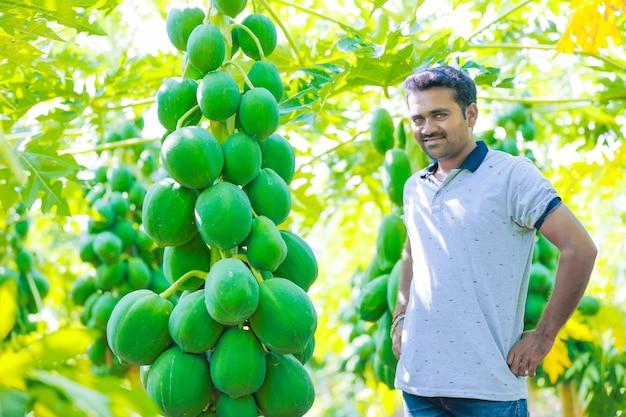 Giovane agricoltore indiano al campo di papaia Foto Premium