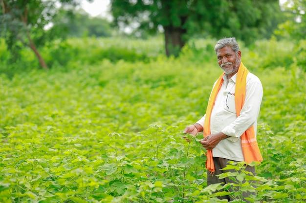 Giovane agricoltore indiano al giacimento di cotone, india Foto Premium