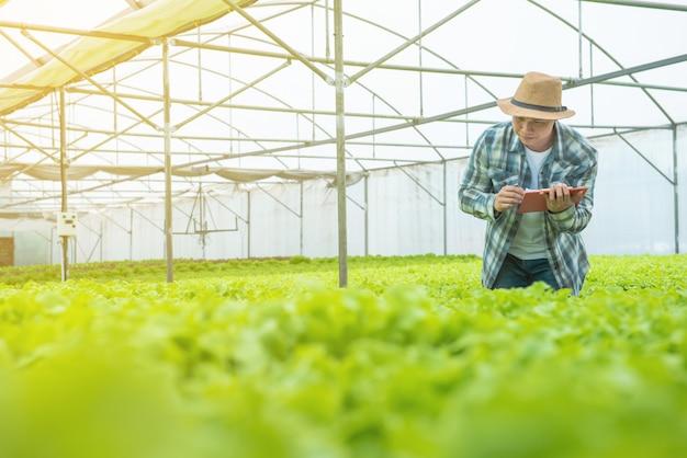 Giovane attraente uomo asiatico raccolta insalata di verdure fresche dalla sua fattoria idroponica in serra prima di inviare a vendere al mercato. Foto Premium